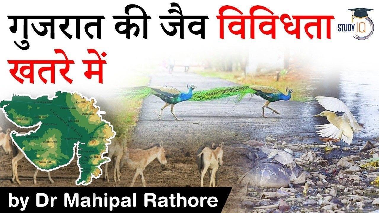 Biodiversity of Gujarat - Why unique wildlife populations of Gujarat need immediate attention #UPSC