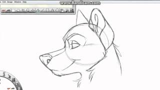 Toony Dog Profile Tutorial #1