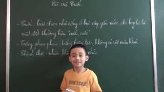Tiếng Việt lớp 2 [Tập đọc] - Cò và Cuốc