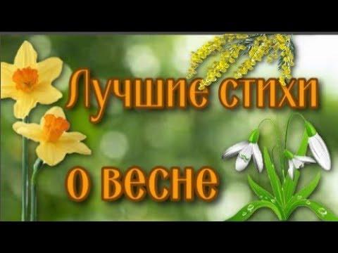 Самые красивые стихи о весне