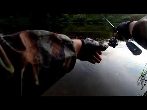Рыбалка на р. Которосль