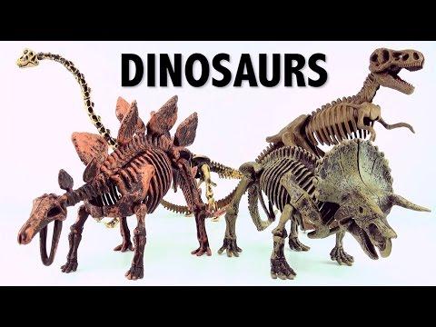 Dinosaur surprise Eggs Skeleton fossils Triceratops and Brachiosaurus Part 2
