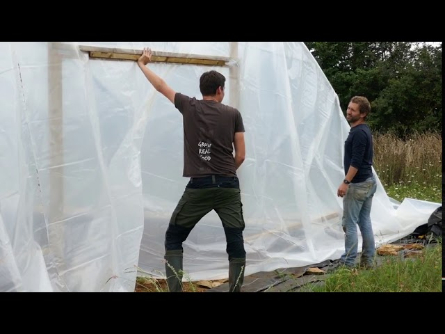 Skinning the Polytunnels