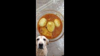 delicious egg curry recipe
