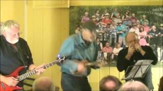 """""""Mit Pfefferminz bin ich dein Prinz"""" - Cover live in Bremen (2014)"""