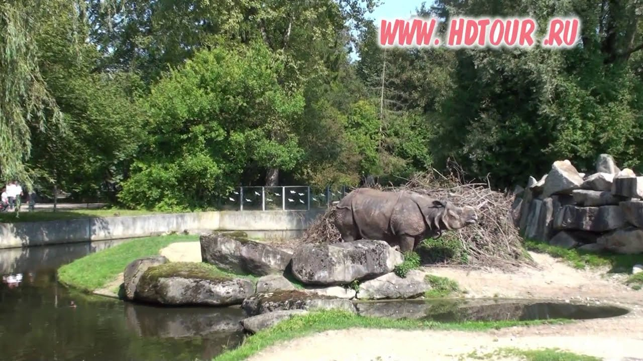 germany 7 munich zoo tour and video guide youtube. Black Bedroom Furniture Sets. Home Design Ideas