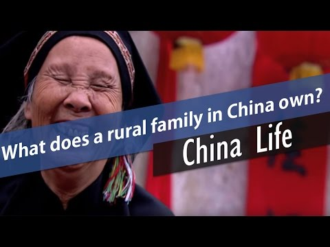 What does a rural family in China own?