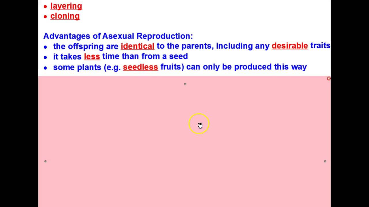 Two advantages and disadvantages of asexual reproduction