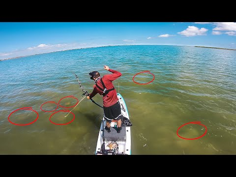 They Came Out Of Nowhere... TRIPLE THREAT CHALLENGE - Flyfishing Bowfishing Lure Fishing