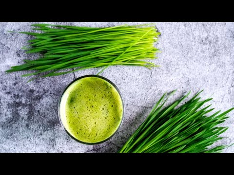 When You Eat Wheatgrass Every Day This Is What Happens To Your Body!