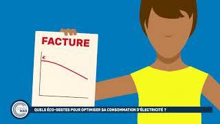 Quels éco-gestes pour optimiser sa consommation d'électricité ?