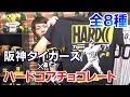 阪神コラボTシャツ!阪神タイガースとハードコアチョコレートのコラボTシャツがめちゃくちゃカッコイイ!