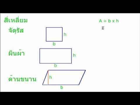 สี่เหลี่ยม หาพื้นที่ เลข ป6 4/6