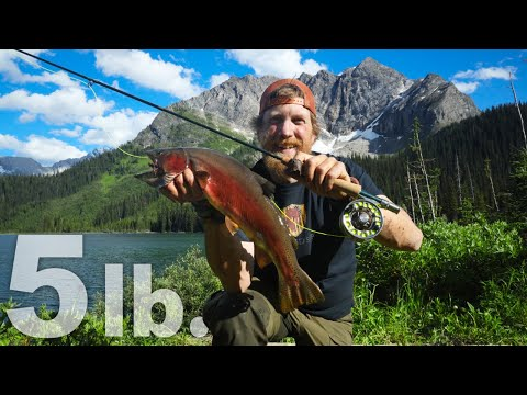 Catch & Cook On A L.L.Bean Streamlight Fly Rod DAY 24 Of 30 Day Survival Challenge Canadian Rockies