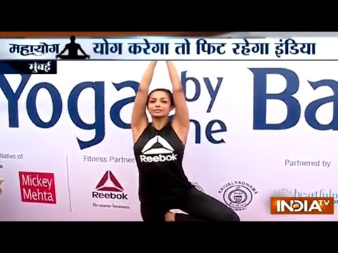 Bollywood celebs and political leaders perform yoga on International Yoga Day