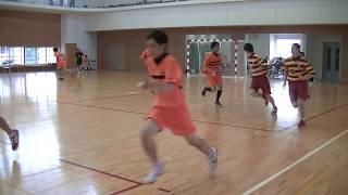 ハンドボール 東京都高等学校 関東大会予選 明星対八王子(前半)