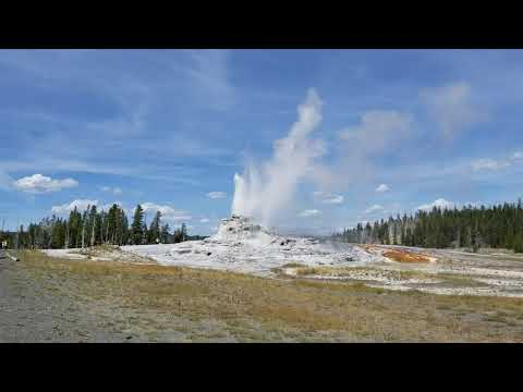 Castle Geyser erupting and flowing over at Yellowstone National Park