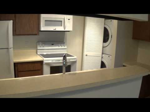 One Bedroom - One Bath Remodeled Apartment - Sand Pebble - 3250 E Ft Lowell Rd Tucson AZ 85716