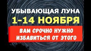 Убывающая луна с 1 по 14 ноября ВАМ СРОЧНО НУЖНО ИЗБАВИТЬСЯ ОТ ЭТОГО