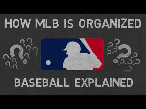How MLB Is Organized   Baseball Explained
