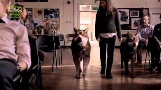 Wolfblood Season 2 Trailer