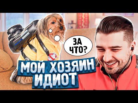 HARD PLAY СМОТРИТ БАЛТИМОР 8 МИНУТ СМЕХА ЛУЧШИЕ ПРИКОЛЫ ДЕКАБРЬ 2019