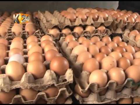 Kenyan traders lament ban on Uganda poultry products