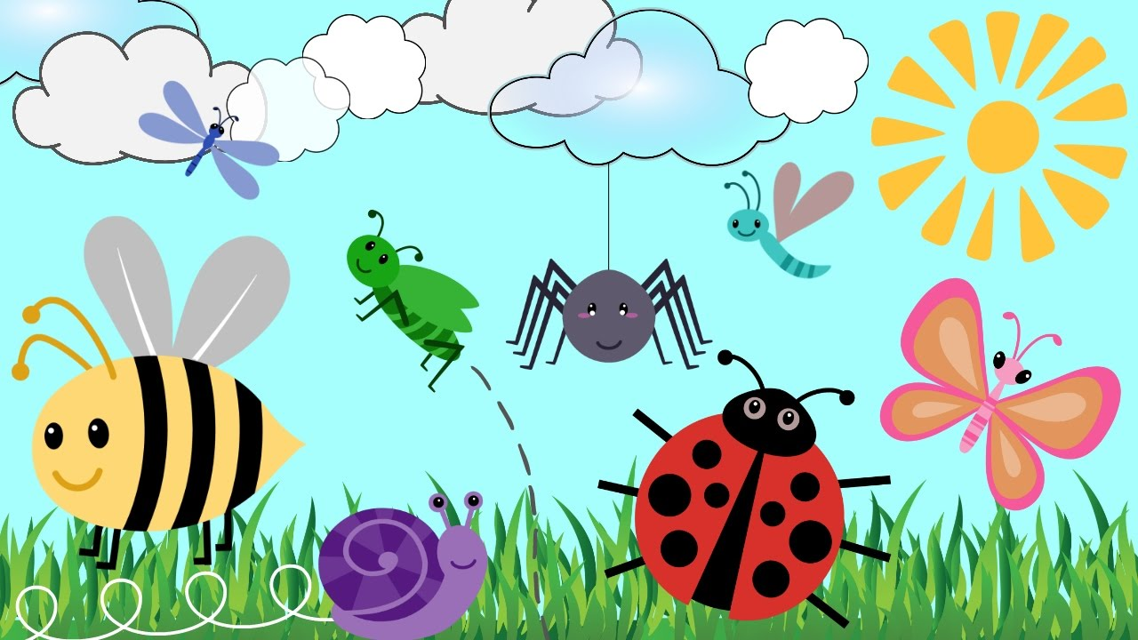 BUG CARTOONS FOR KIDS!! | Learn Bug Names | Creepy Crawlies & Fun ...