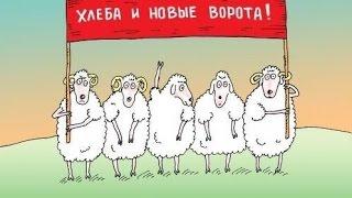 Реакция животных на рост цен в России
