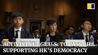 Activists including Joshua Wong urge US to support Hong Kong's democracy