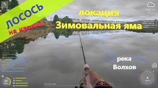 Русская рыбалка 4 река Волхов Лосось на зимовальной яме