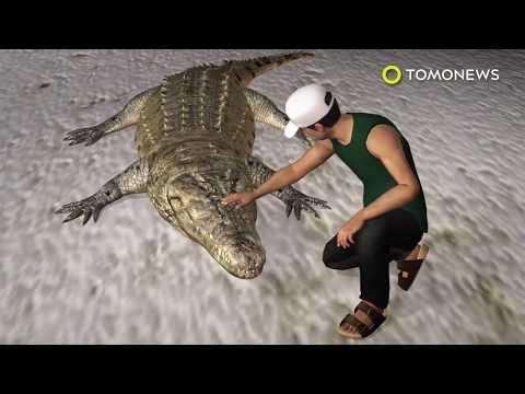 Crocodile attack rips leg off reptile park worker in Malaysia - TomoNews