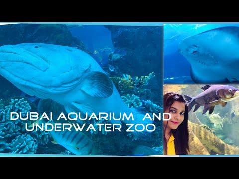 Dubai aquarium and under water zoo 🐟🐠🐡|| uae||dubai mall