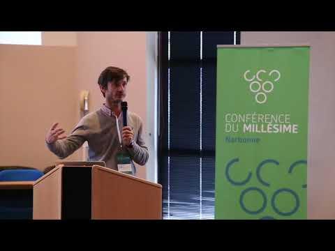 2015 Narbonne Conference du Millesime - Sebastien Payen - Effet Deficit Hydrique