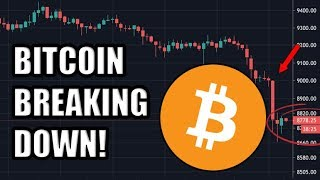 BITCOIN BREAKING DOWN! Don't Forget: One US Company Is Buying 8% Of All Bitcoin RIGHT NOW!