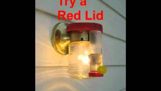 Simple Heated Hummingbird Feeder