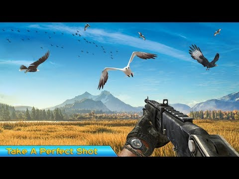 Birds Hunting Challenge Android Gameplay
