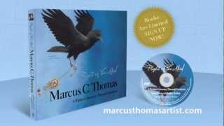 Marcus Thomas Artist: Flight of the Mind Teaser