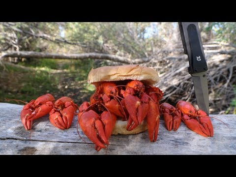 Making A Crawfish Sandwich - Catch N' Cook Crawfish!