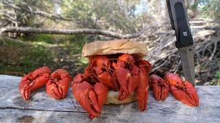 Making a Crawfish Sandwich - Catch n