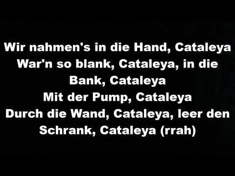 Samra - Cataleya lyrics