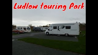 Bessie at Ludlow touring Park - New Year 2015