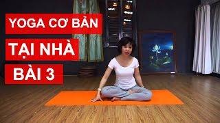 Yoga cơ bản tại nhà - Bài 3: Luyện tập sử dụng âm thanh Yoga cùng Nguyễn Hiếu Yoga