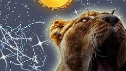 Diese Eigenschaften hat das Sternzeichen Löwe