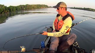 Suspend Drifting for Catfish with Cut White Bass