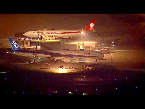 Aviation expert questions safety of ANA jet's U-turn to LAX