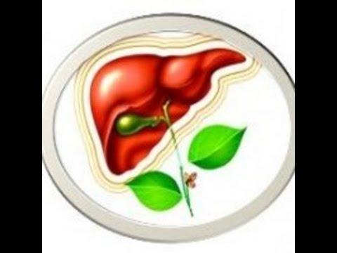 Стеатоз печени: симптомы, причины и лечение. Стадии