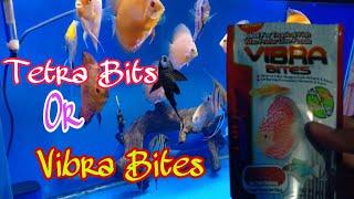 Pakan Ikan Discus, Vibra Bites or Tetra Bits