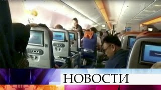 видео Медузы в Крыму, стоит ли их опасаться