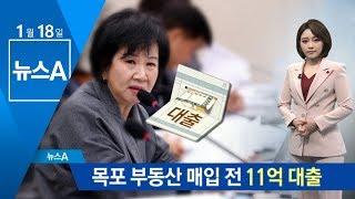 손혜원, 11억 대출 받아 목포 부동산 매입…투기 논란 | 뉴스A thumbnail